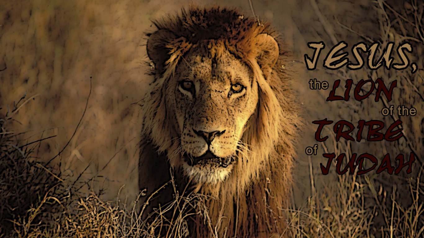 The Lion Christian Wallpapers