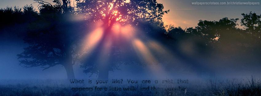 A Mist   Christian Wal...