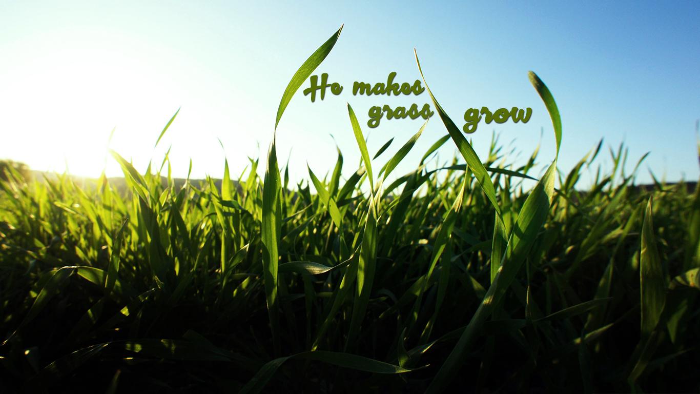 he makes grass grow christian wallpaper hd_1366x768