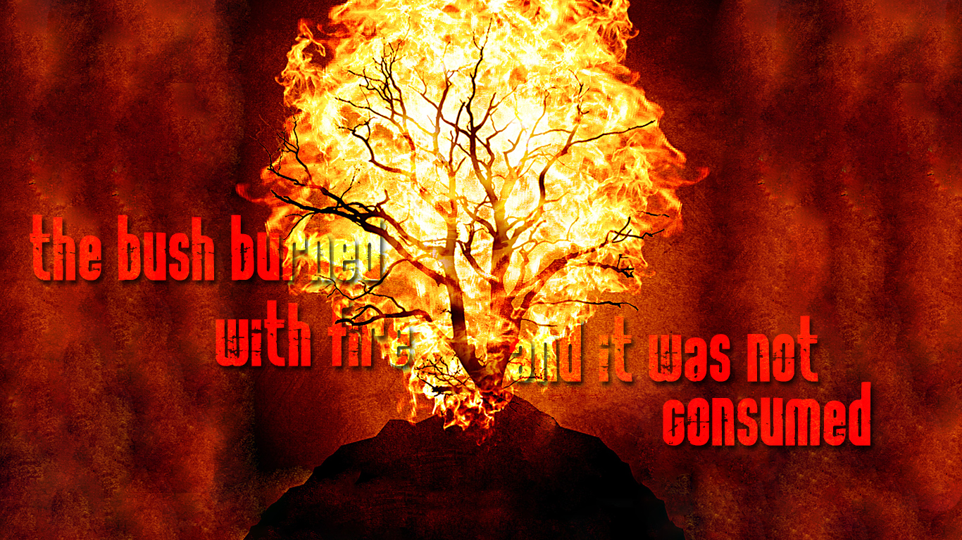 the bush burned with fire and it was not consumed christian wallpaper_1366x768