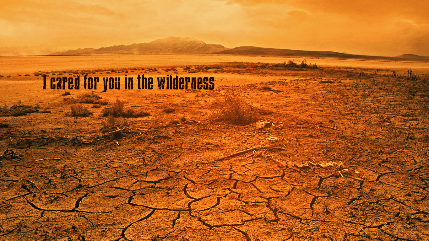 I cared for you in the wilderness christian wallpaper hd_1366x768