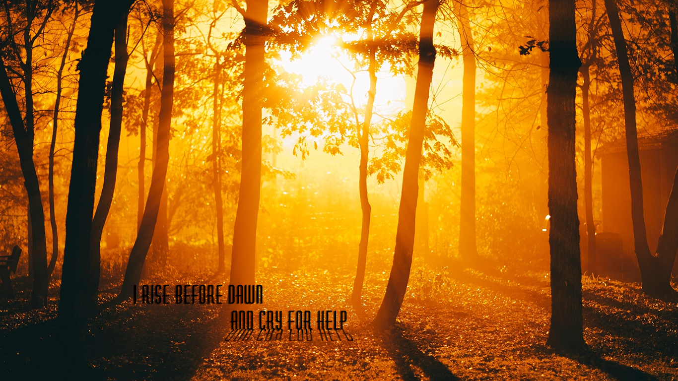 I rise before dawn and cry for help christian wallpaper hd_1366x768