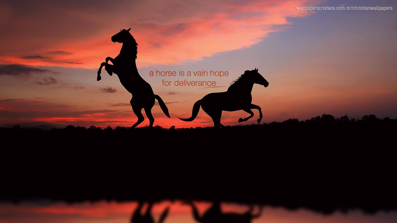 horse is vain hope for deliverance christian wallpaper hd_1366x768