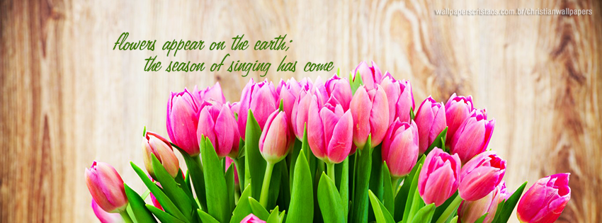 Flowers Christian Wallpapers